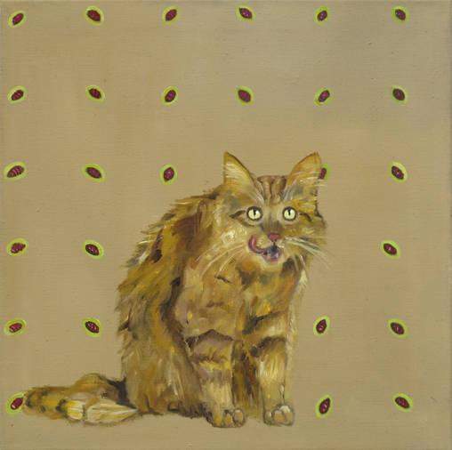 Katze IV - 60 x 60 cm/÷la.LW - 2011